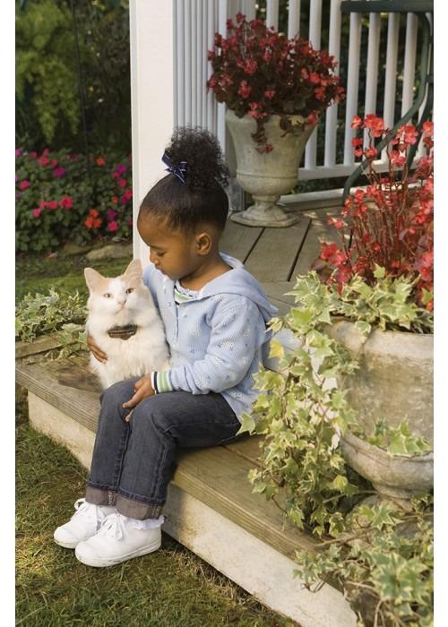 Petsafe Láthatatlan kerítés macskáknak és nagyon kicsi valamint közepes testű kutyáknak PIG20-11041 5